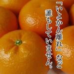 愛媛のフルーツスエヒロ