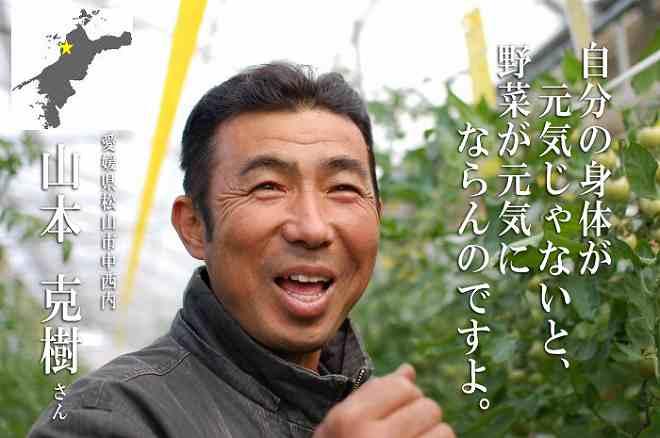 yamamototop